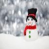 Snowman34