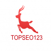 TOpseo123