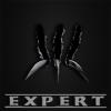 Expertv1