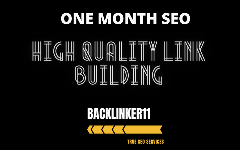 provide a One Complete Month SEO service with high quality link building