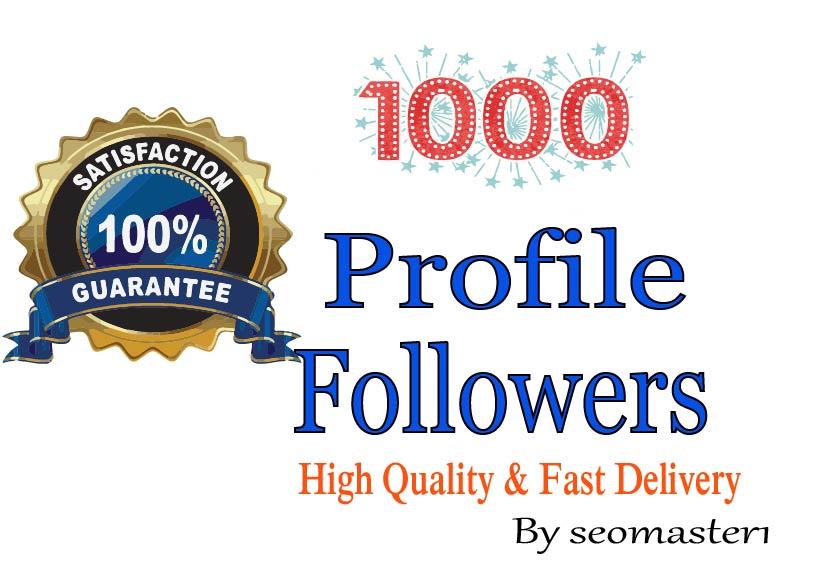 Add 1000 HQ and organic Profile Followers