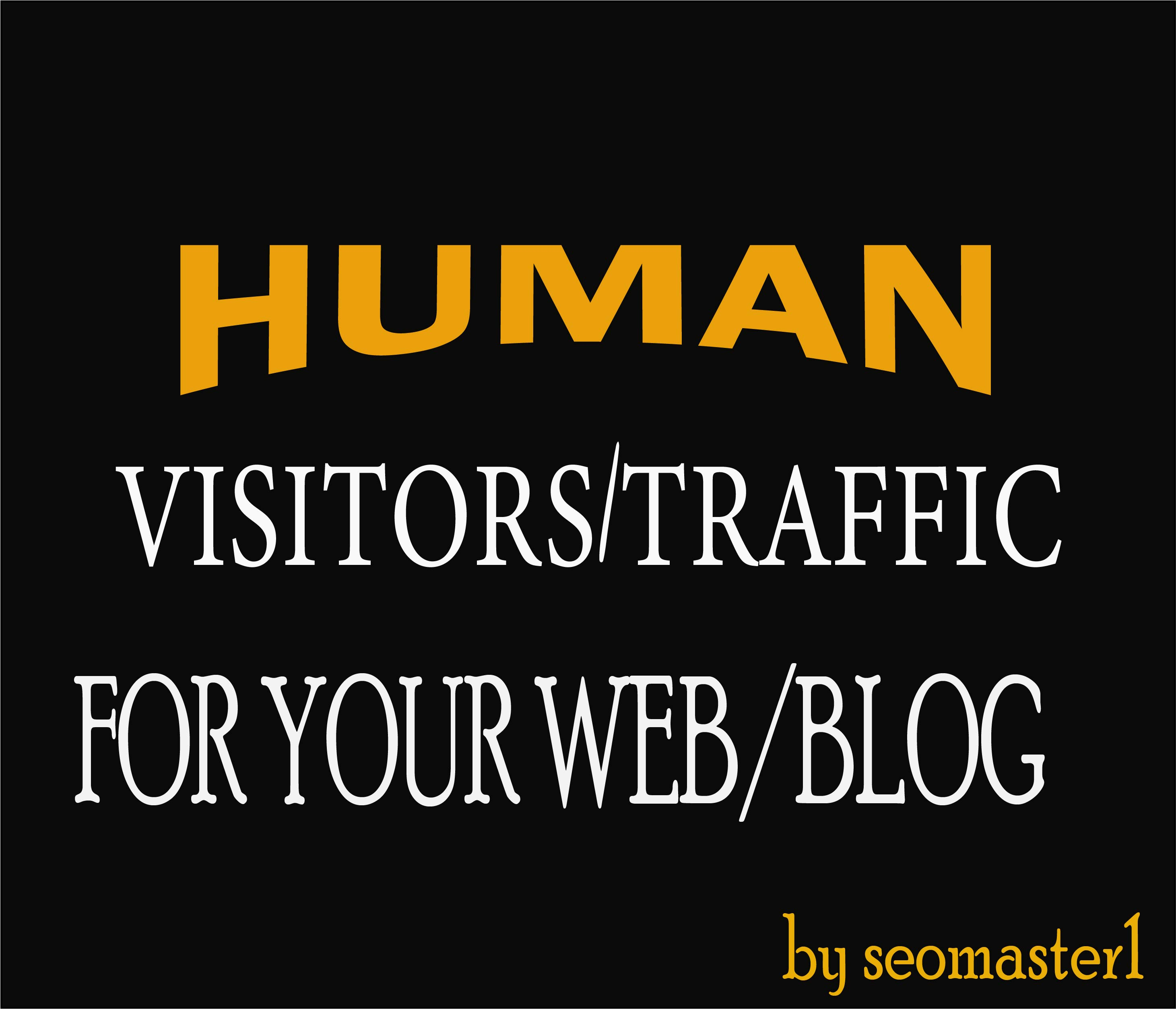 9000 Human visitors/traffic to your Web/Blog Adsense safe and get Good Alexa rank