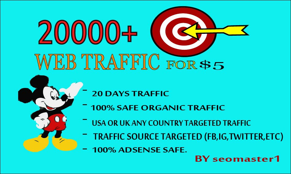 20000 Human Targeted visitors/traffic to your Web/Blog Adsense safe and get Good Alexa rank