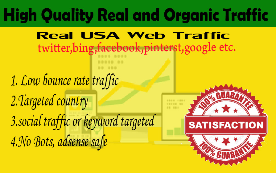 6000 Human USA Targeted traffic to your web or blog site. Get Adsense safe and get Good Alexa rank
