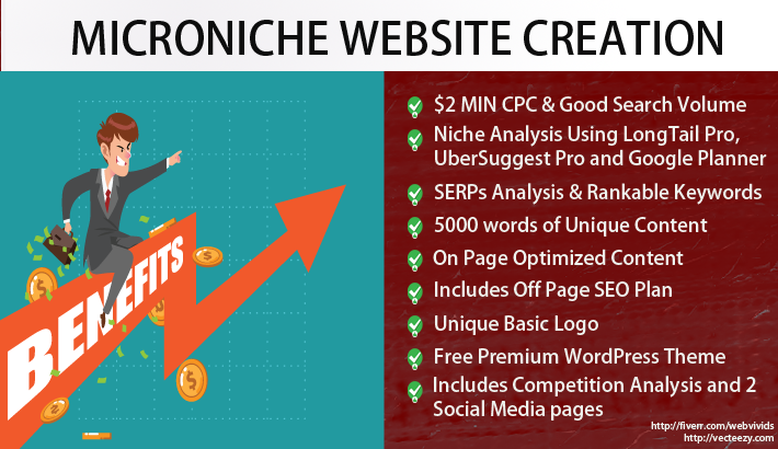Build Your Micro Niche WebSite