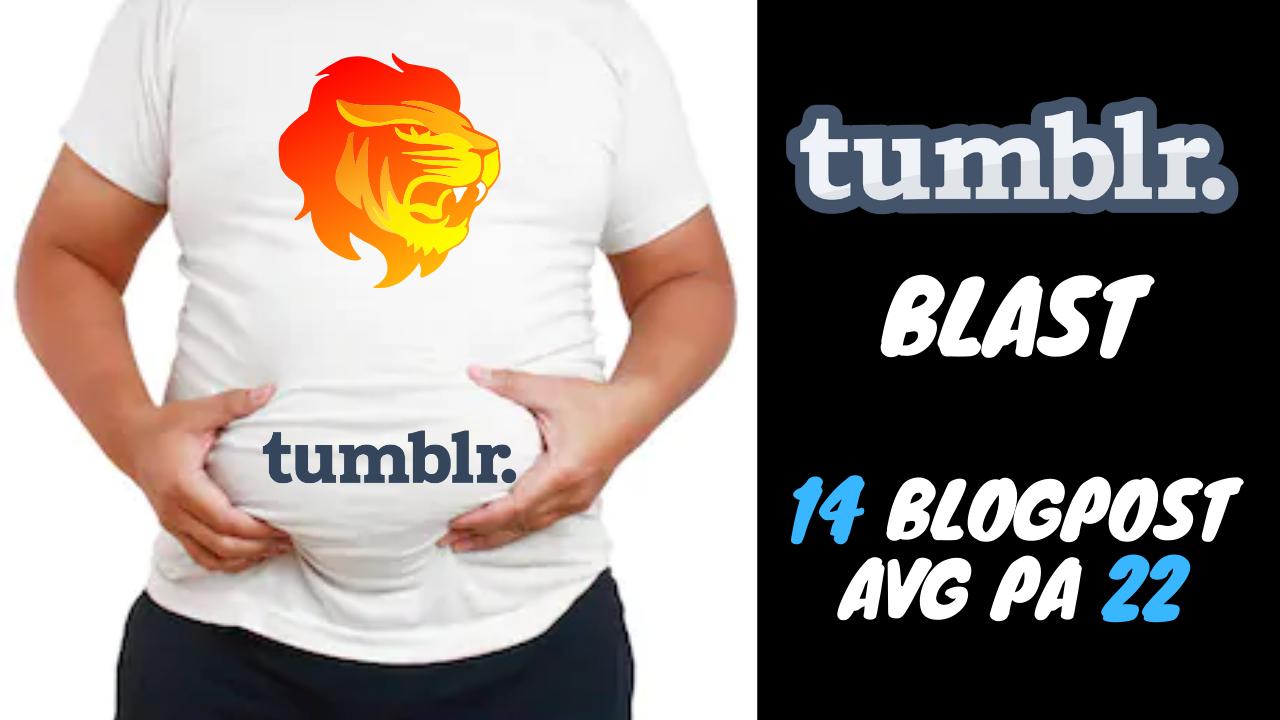 I Will Do a Tumblr Blast 14 Blogpost Avg PA 22 Moz Trust Avg 3.5