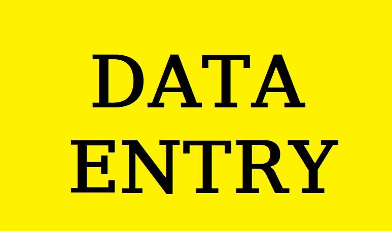 I will do any type of data entry job