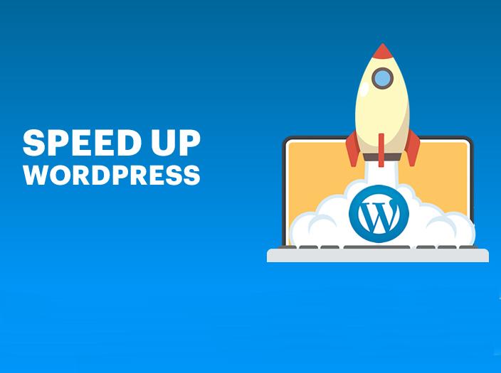 Fully optimize WordPress SEO,  WordPress Security and Speed Optimization