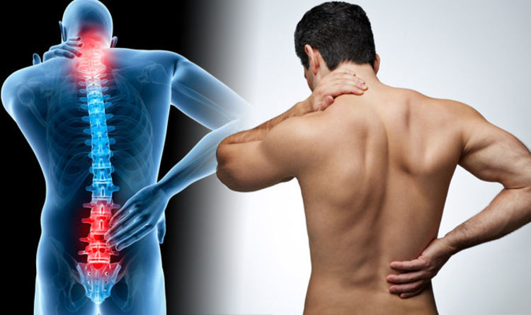 give you 49 Back Pain Articles