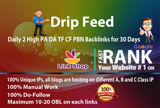 Drip Feed,  Daily 2 High PA DA TF CF PBN Backlinks