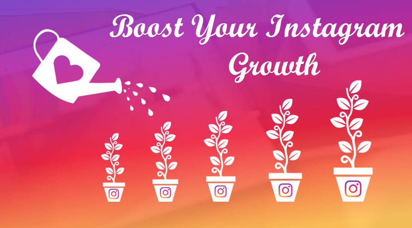 Professionally grow and promote your IG account