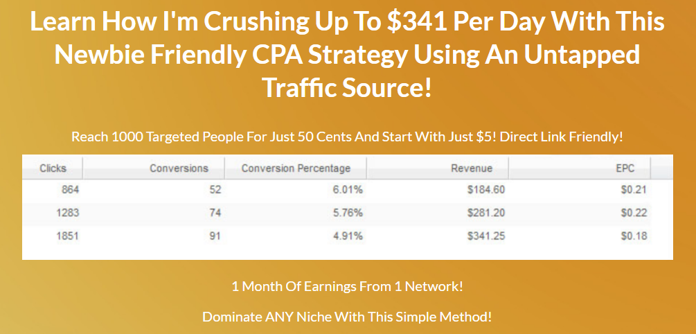 Show You How To Make 250 Per Day With CPA Spending 50 Cents For 1000 Visitors
