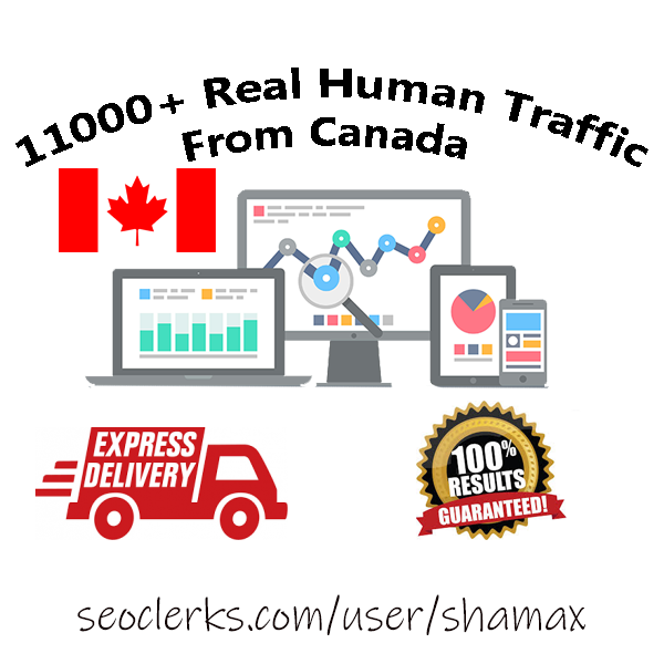 Traffic Services From Top Level X Sellers - Price