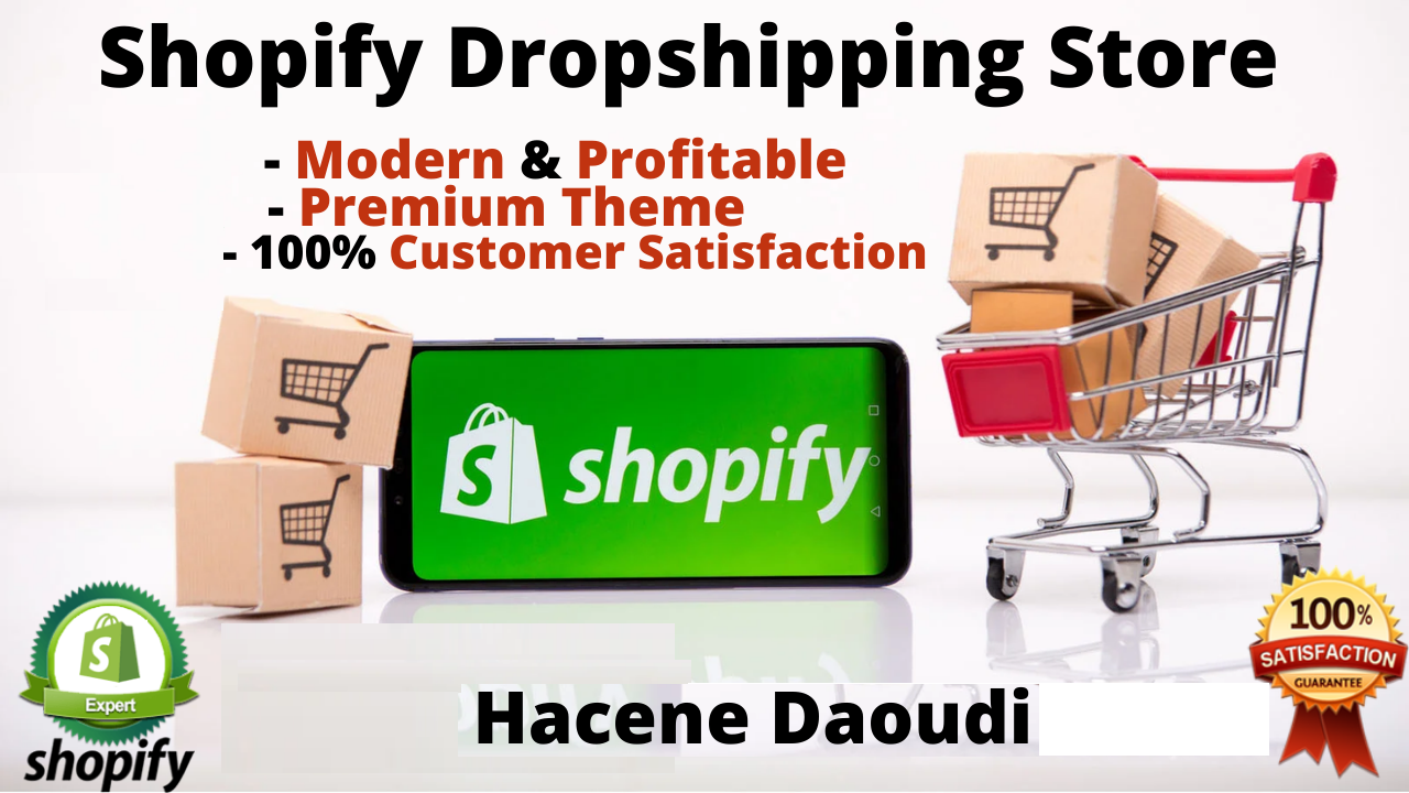 I will create professional shopify dropshipping store