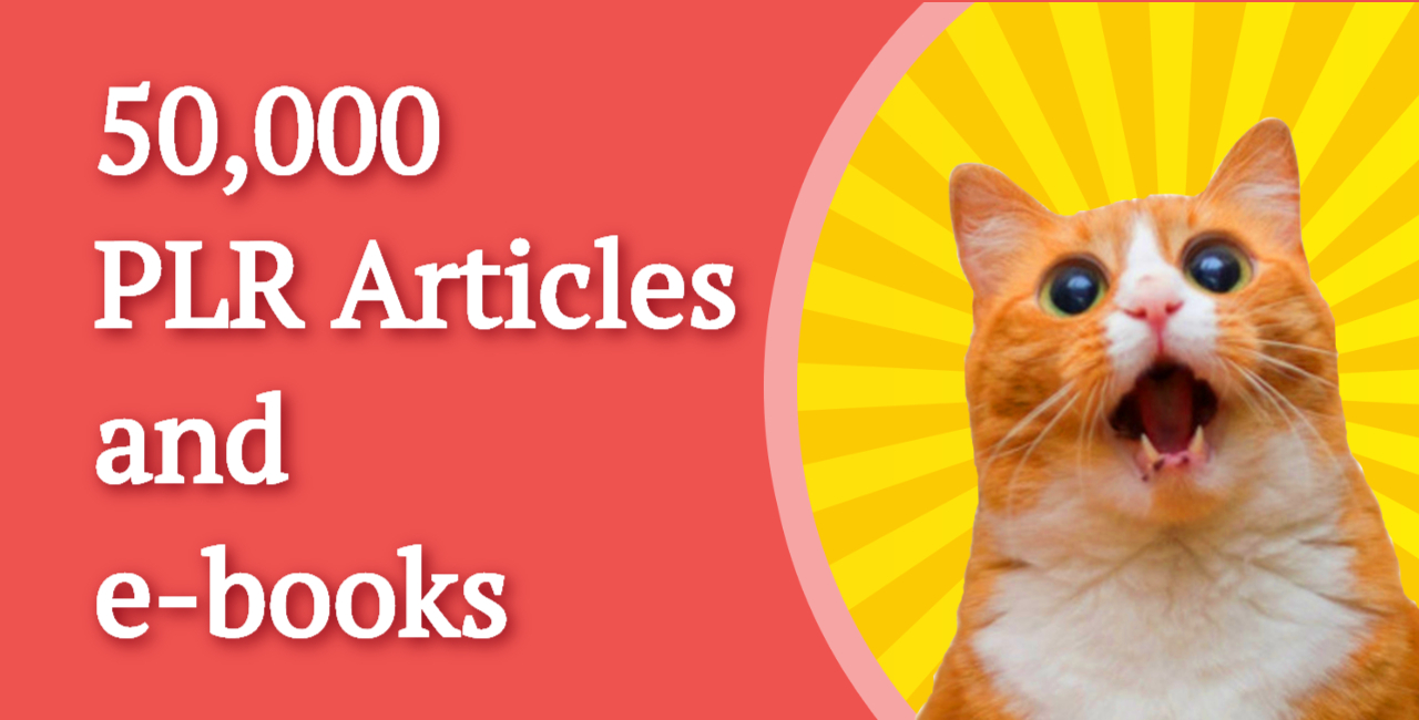 I will give you 50,000 PLR articles