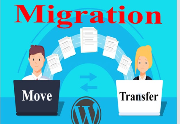 Help web site hosting migration and Domain Transfer