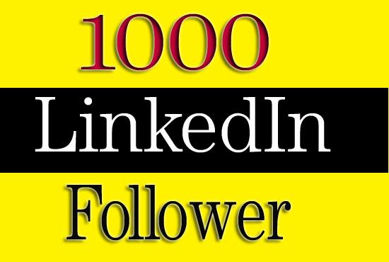 Give 1000+ high quality LinkedIn Followers for LinkedIn Company & Profile Account