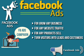 I Will Drive Keyword Targeted Organic Web Traffic Facebook Paid Ads Campaign