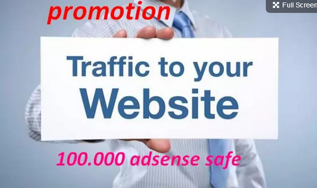 Minimum 100000 Real, UNIQUE and Organic Visitors Traffic to Site in ONE WEEK