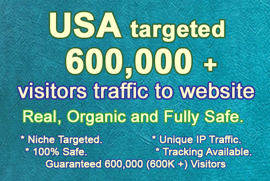 600,000 USA Targeted Real Organic and Unique Visitors Traffic to Website