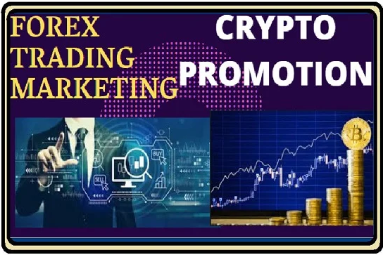 3 Months Unlimited Real Organic Crypto Currency Bitcoin Website Visitors Traffic