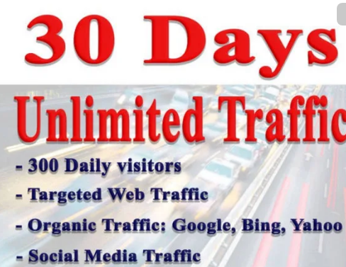 Bring Real Visitors, Targeted Web Traffic, From Usa, Uk for WHOLE MONTH 30 Days