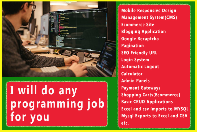 I will do any programming job for you