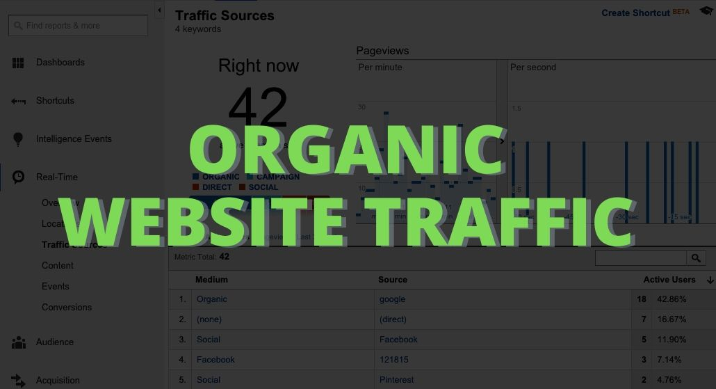 Organic Website Traffic from USA + Choose Your Source