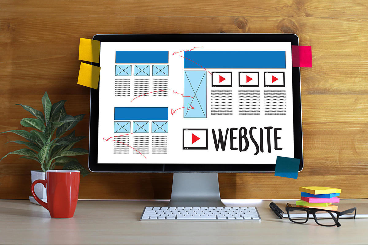 Professionally Design and Develop my website