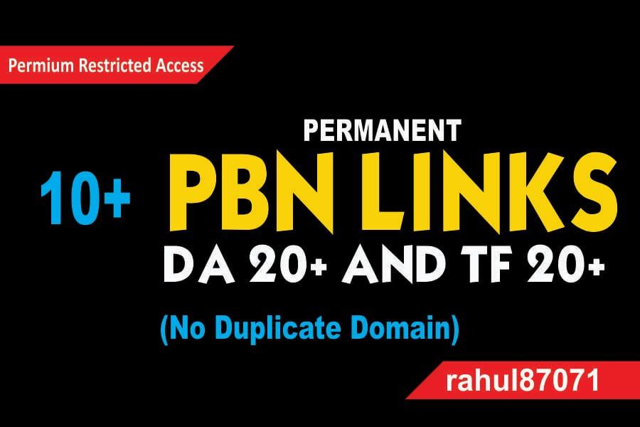 Build manual 10+ PBN Links DA 20+ and TF 20+ backlink