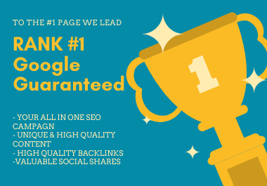 Get Ranked 1 Page On Google ALL IN ONE SEO Package