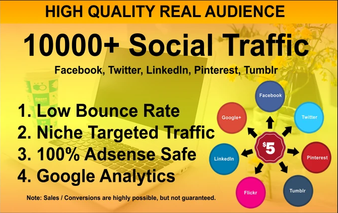 I will drive targeted web traffic from social media