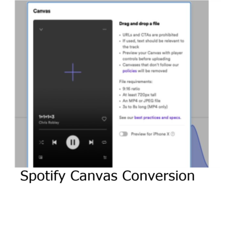 Format for MP4 or JPG to a 9.16 720px Song Promotion Canvas