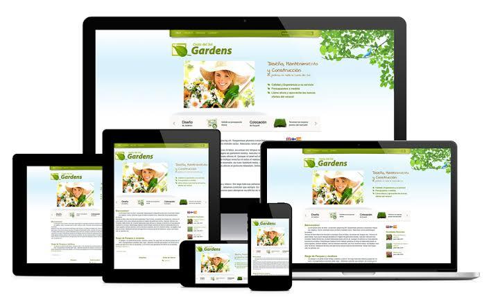 Design or Develop or fix WordPress website