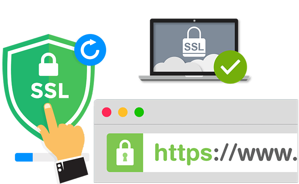 Purchase & Install SSL certificate for your domain