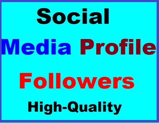 Social Media Profile Follow High Quality Instant Start