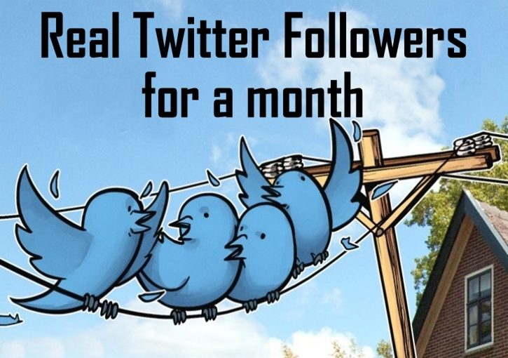 Do Twitter Management Marketing And Grow Your Social Media Promotion Manually