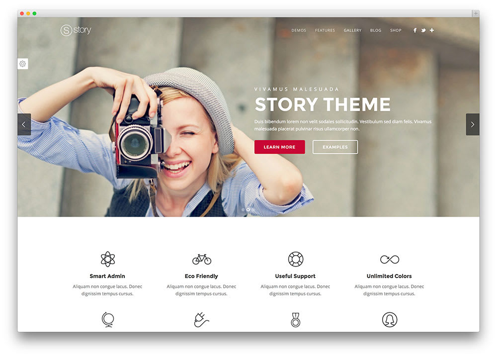 wordpress website design woocommerce,  magazine,  landing page and etc