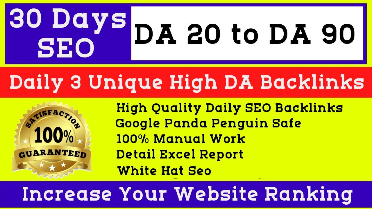 Meraki 30 Days drip feed,  daily 3 high da backlinks manually white hat seo