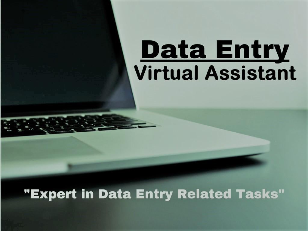 I will provide any Data Entry job