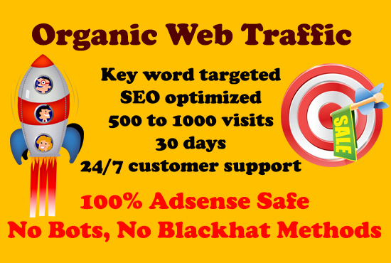 Daily 500+ organic key word targeted WEB TRAFFIC for 30 days