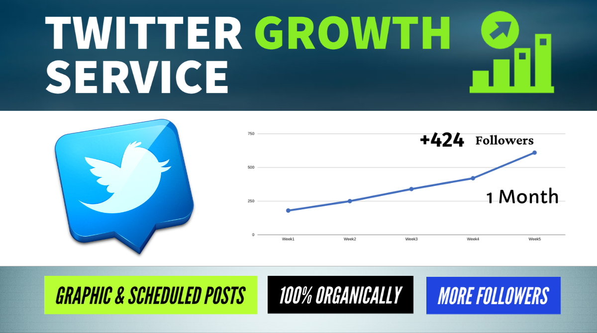 Twitter Growth Service - Real and Organic Audience