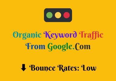 I Will Provide Organic Keyword Traffic From Google