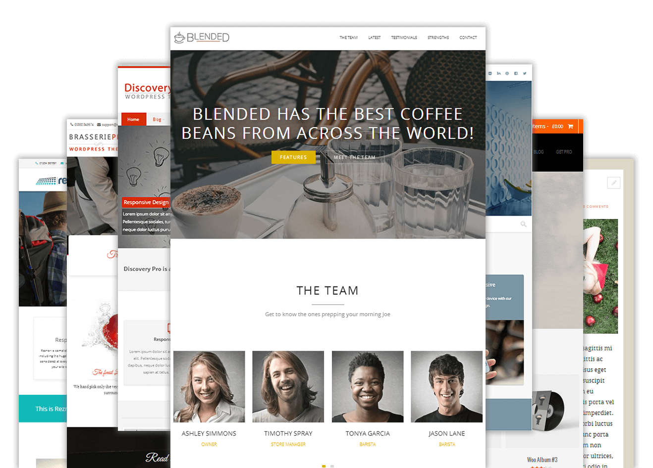 I will setup your wordpress site in premium themes quality design