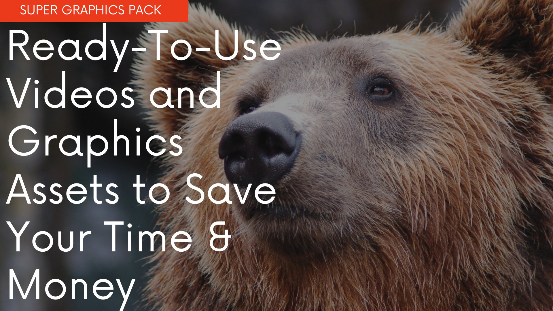 Ready-To-Use Videos and Graphics Assets to Save Your Time & Money