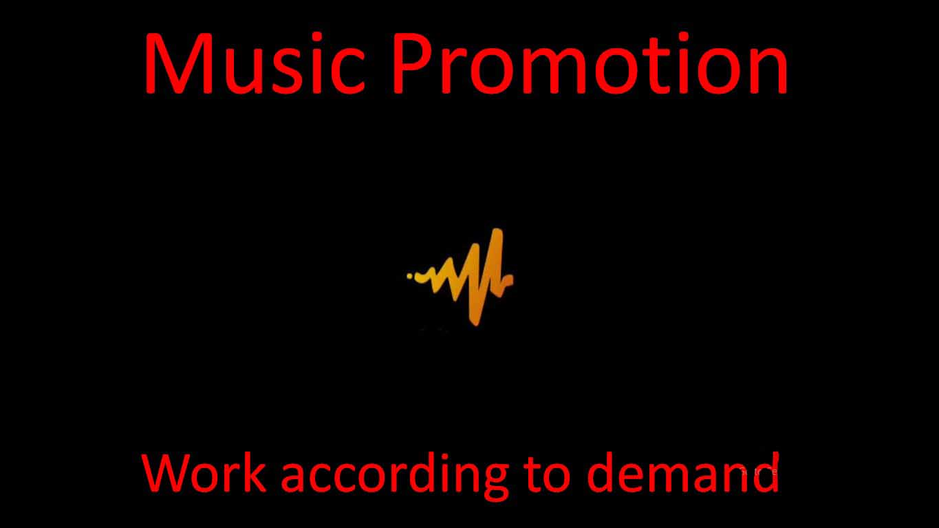 Music promotion according to your work needs super fast delivery