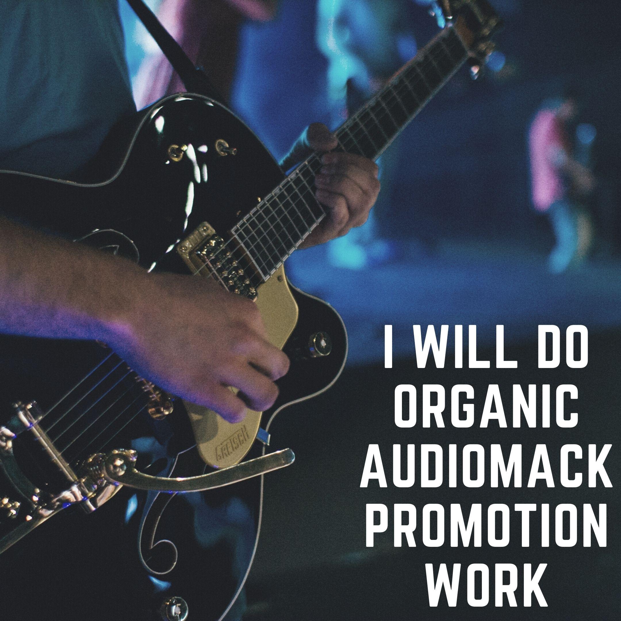 I will do organic audiomack music promotion work