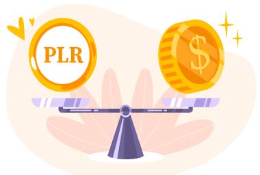 High Quality Premium PLR & MMR Ebooks ,PLR Articles and Videos