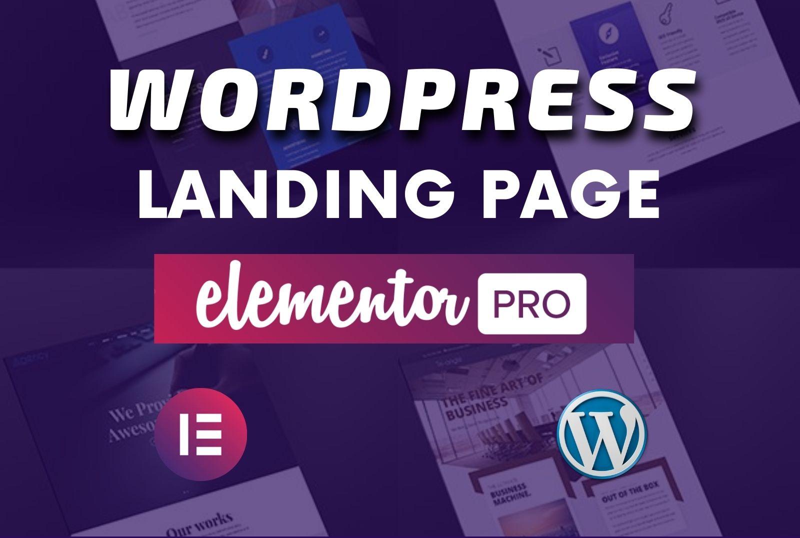 Design a professional landing page or wordpress website