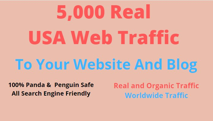 Get 5000 Human Verified Unique USA visitors on your website Fast and Safe